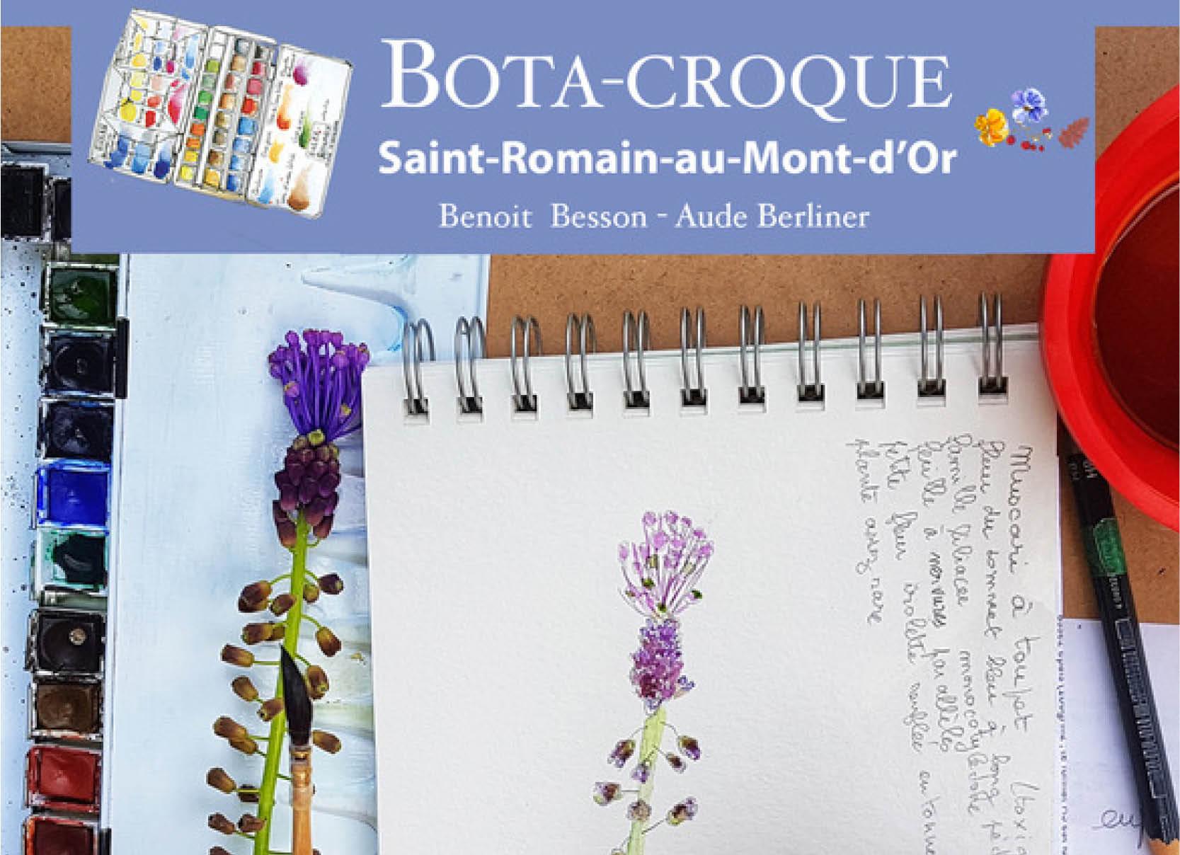 Botacroque #2